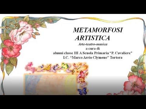 metamorfosi artistica