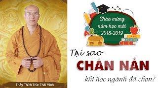 Tại Sao Chán Nản Khi Học Ngành Đã Chọn?| Thầy Thích Trúc Thái Minh