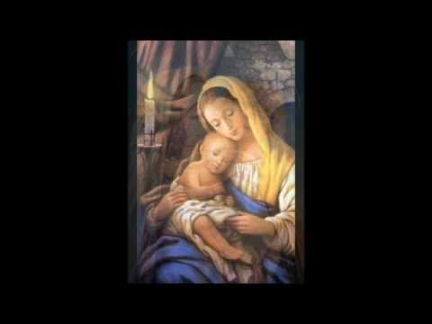 Junto a ti Maria - Padre Lucas Casaert