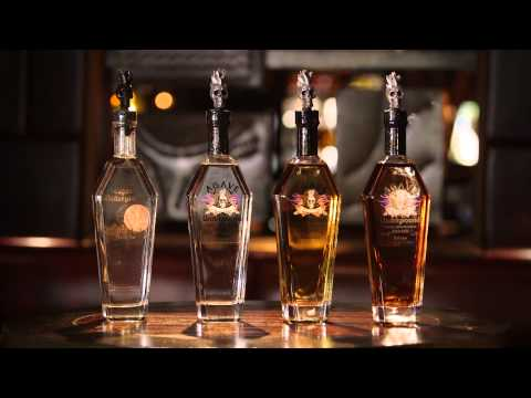 The Agave Underground Tequila Brand