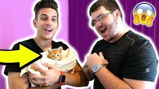 TAKING UNSPEAKABLEGAMING'S CAT! (Minecraft Real Life Troll)