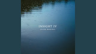 insight-xxxv.jpg