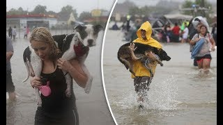People Helps And Rescue Animals Lives 2017 -  Real Life Heroes - Ultimate Video