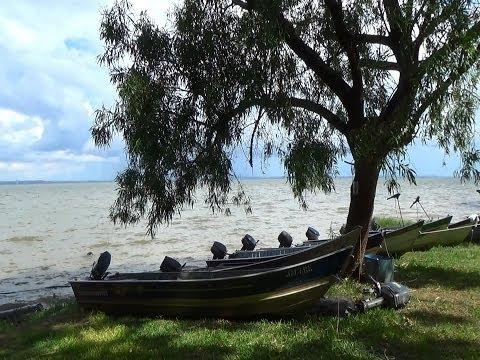 Baixar Sons da natureza, Canto de pássaros, Relaxamento,  Rio paraná, Barcos a sombra,