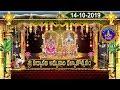 Sr PadmavathiammavarI Kalyanotsavam, Tiruchanoor |14-10-19 | SVBC TTD