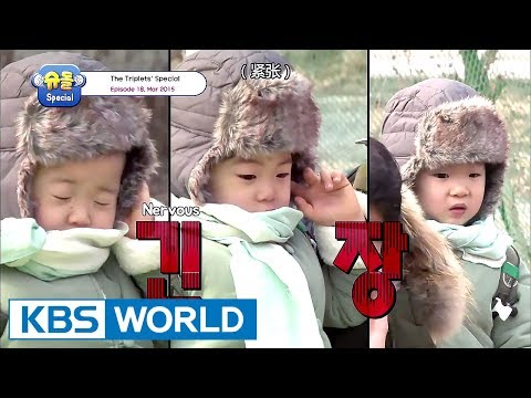 The Return of Superman - The Triplets Special Ep.18 [ENG/CHN/2017.09.08]