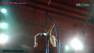 Pole Assassin on Silk by Naked Dreams Entertainment