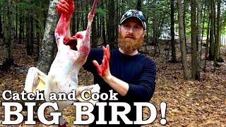 Catch and Cook TASTY Wild BIRD! | 100% WILD Food SURVIVAL Challenge!