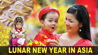 Lunar New Year's Celebration: Korea vs. China vs. Vietnam