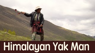 Himalayan Yak Man: His Daily Life; Finding Most Expensive Mushroom in the World (Full Documentary)