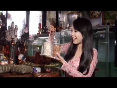 好一個越南年菜, Vietnam New Year Foods ( Helen Thanh Dao ).wmv