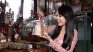 好一個越南年菜, Vietnam New Year Foods ( Helen Thanh Dao ).wmv