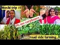 Moshi trip | African crops | Farming videos | ఆఫ్రికన్స్ తో మన బ్రేక్ ఫాస్ట్ @neelusvlogs