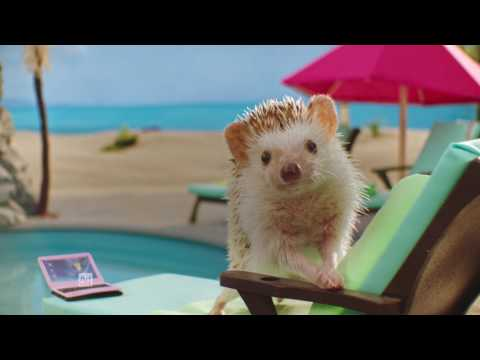 Risk Test Hedgehogs :15 | Type 2 Diabetes Prevention | Ad Council