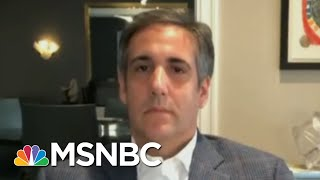 'I'm Not The One Who Had The Affair': Cohen On Taking The Fall For Trump | Rachel Maddow | MSNBC