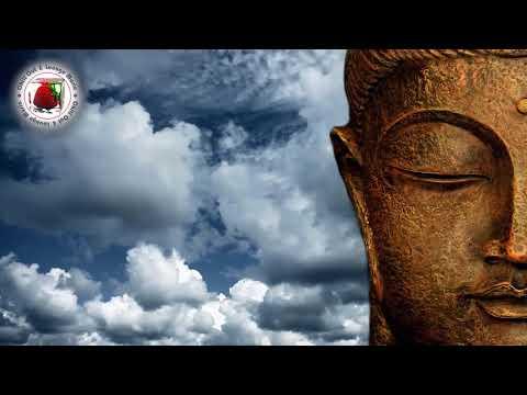 The Best of Buddha Luxury Bar 2018 Summer set