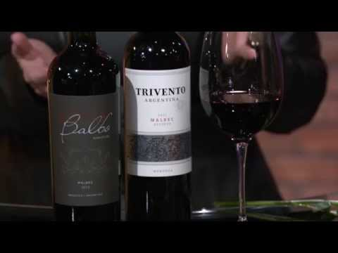 Wines from Argentina: Check, Please! Bay Area Wine Tips