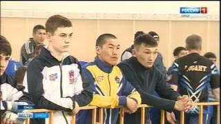 В Омске прошли чемпионат и первенство Сибири по смешанным единоборствам