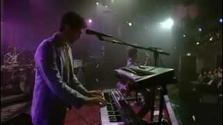 MGMT Live on David Letterman FULL SHOW