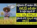 How to Start Cold Storage Business In Telugu l Low Investment Cold Storage In India l Business Ideas