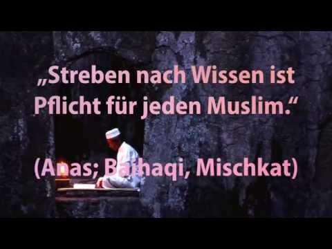 Trailer Streben-nach-Wissen e.V.