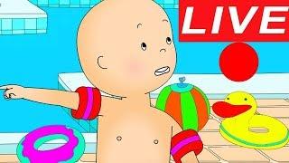 Cartoons für Kinder Caillou   Offizieller Kanal Live 🔴 Caillou Lernt Schwimmen   Caillou auf Deutsch