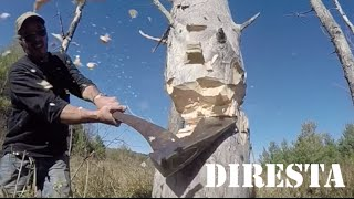 ✔ DiResta Chops Down a Tree