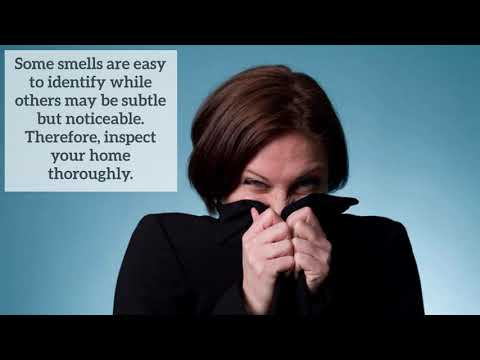 Ways to Identify & Get Rid Of Lingering Odours In Your Home