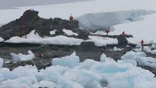 Scientists Tracking 'Unstoppable' Ice Melt in Antarctica