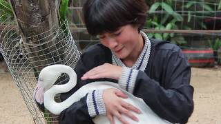 รายการ Petlover by Jerhigh 240660: Home Zoo ตอน 1