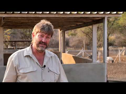 Bush Control Namibia: Turning Bush into Fodder