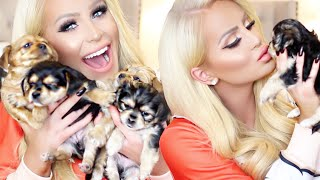 MEET MY PUPPIES! | Gigi