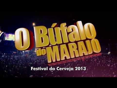 Baixar TEASER DVD BUFALO DO MARAJO - FESTA DA CERVEJA 2013