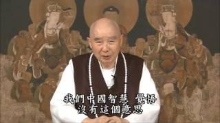 Kinh Vô Lượng Thọ Tinh Hoa tập 4 - Pháp Sư Tịnh Không
