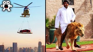 40 Strangest Things You'll Only See In Dubai