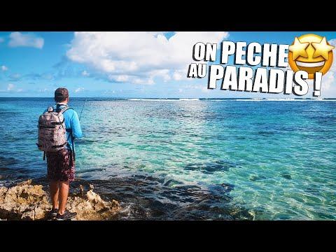 SHORE FISHING in PARADISE !