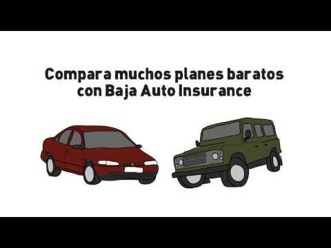 Segurode Auto Dallas TX | Segurode Auto FT Worth TX | Segurode Auto Plano TX