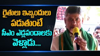 Chandrababu Comments On CM YS Jagan Over Sankranti Celebra..