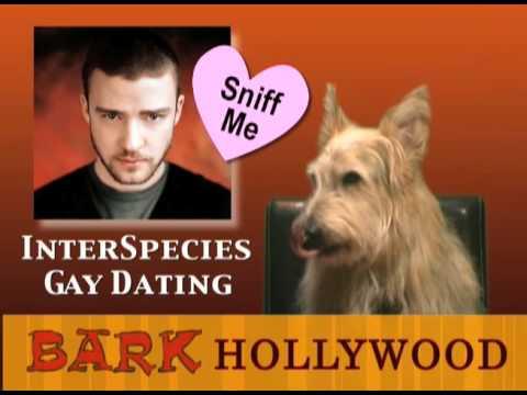 Bark Hollywood - Episode 3