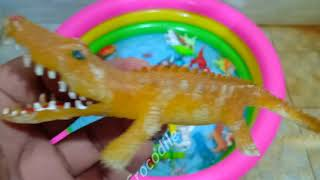 colors animals for kids   Learn Colors With Wild Animals and Sharks in Water Pool Toys For Kids