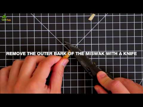 How to use a Miswak stick toothbrush | Sewak Smile