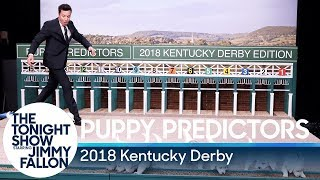 Puppies Predict the 2018 Kentucky Derby