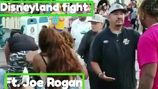 Disneyland fight video 9 July 2019 with Joe Rogan Commentary.