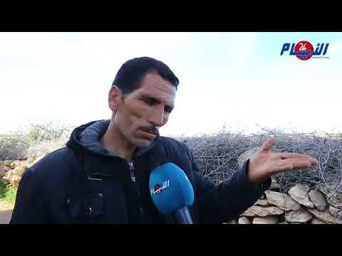 الفيديو الفاضح ينقل معاناة مجتمعية ثقيلة بمنطقة بوشان