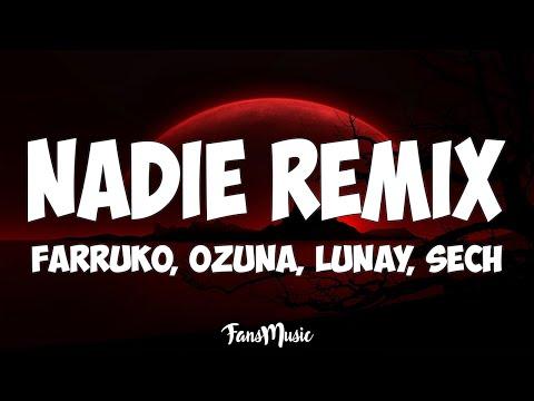 Farruko, Ozuna, Lunay - Nadie Remix (Letra) ft. Sech, Sharo Towers