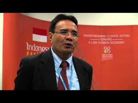 Daniel Murdiyarso on Indonesia's 2013 fires