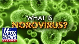 What is norovirus?