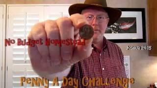 Penny A Day Challenge