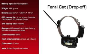 Watch video - GPS Collar for Feral Cat with Drop-off Mechanism