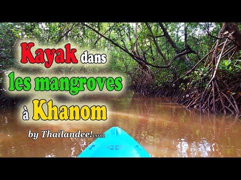 faire du kayak dans les mangroves